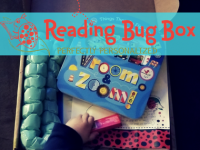 Reading Bug Box Review